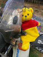Algernon the Bear cuddles up with his new friend Winnie the Pooh
